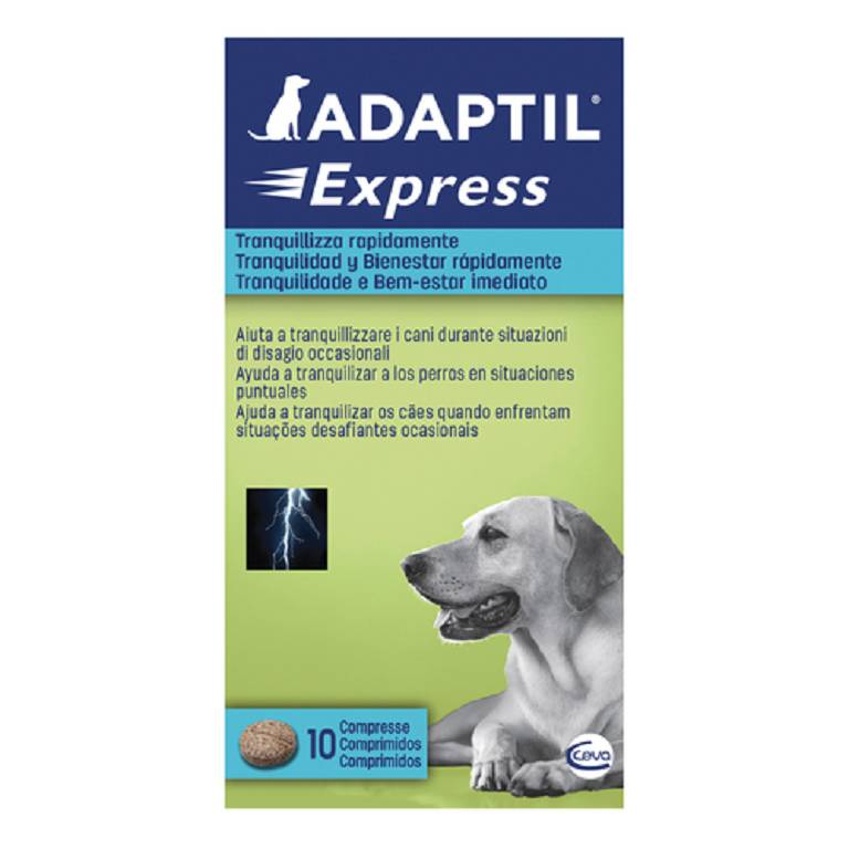 ADAPTIL EXPRESS 10CPR